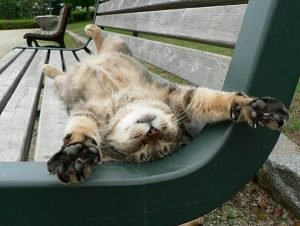 soooo relaxed